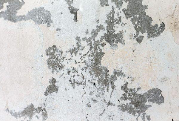 Humedad en pared