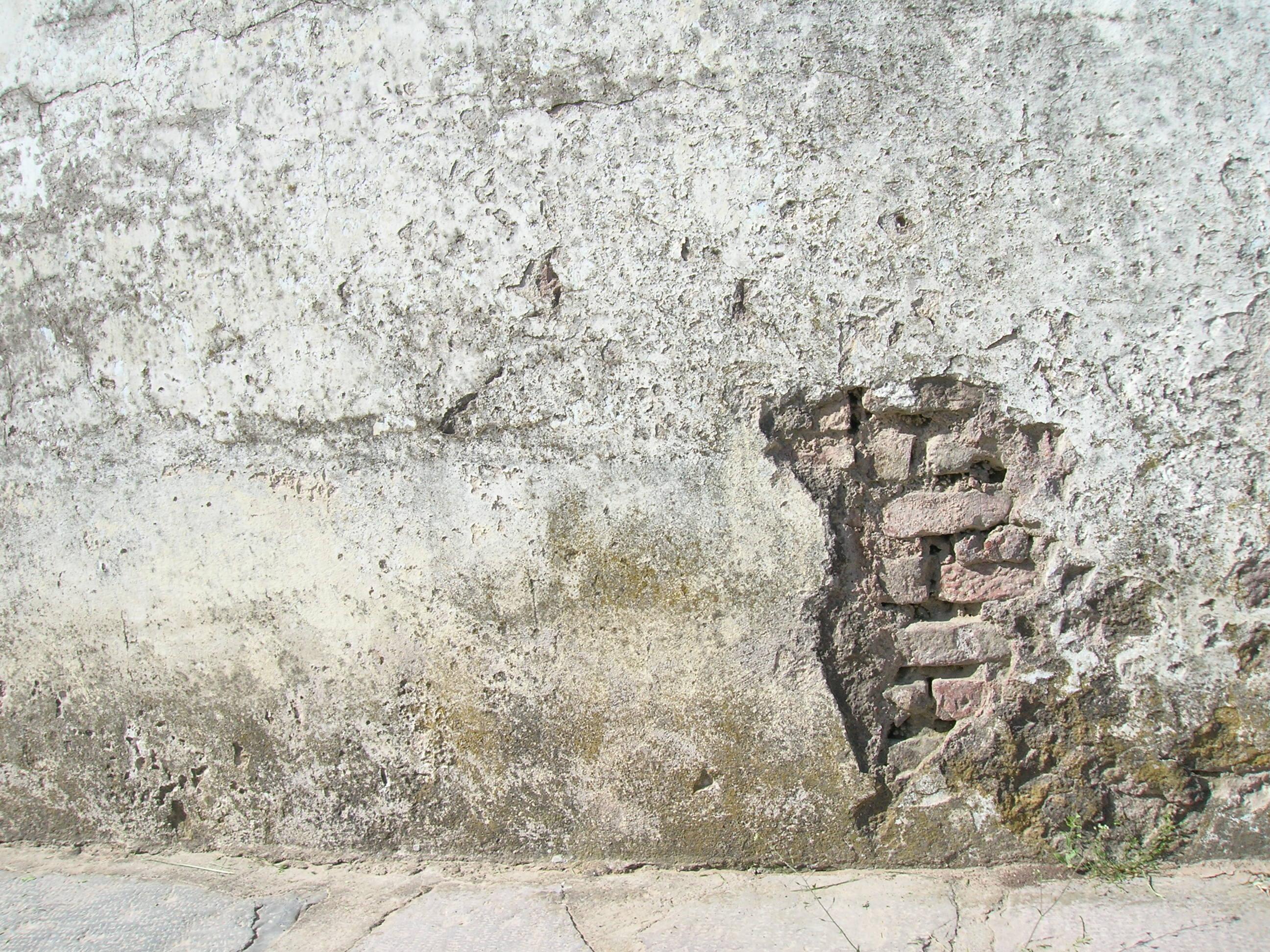 en with para paredes con humedad