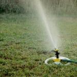 Riego automatizado para jardines