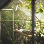 Automatización de invernaderos